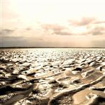 mud flats by scott  - 